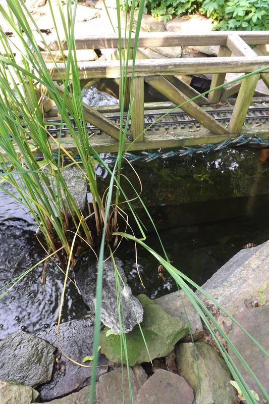 Pond services for Design of water harvesting pond